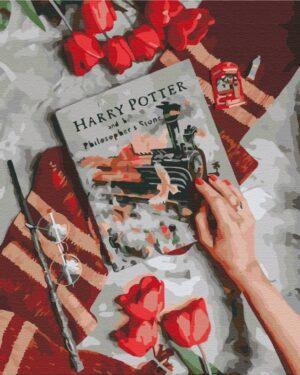 Картина по номерам Знакомство с магическим миром Гарри (Brushme BS36541)